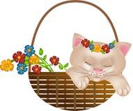 Chaton dans le panier avec des fleurs Photo stock