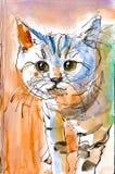 Chaton mignon avec la peinture d'aquarelle de rayures Photographie stock libre de droits