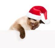 Chaton mignon avec le chapeau rouge de Santa jetant un coup d'oeil par derrière le conseil vide D'isolement sur le fond blanc Image stock