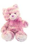 Chaton rose de fourrure Photo stock
