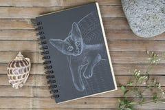 Chaton sur l'illustration tirée par la main de chaise Chat par la craie blanche sur le papier noir Photos libres de droits