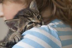 Chaton sur le bras du garçon dehors, enfant énorme son animal familier d'amour Photographie stock