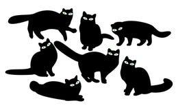 Chats avec des yeux Photographie stock