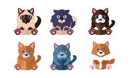 Chats d'ensemble différent de races, animaux familiers mignons d'animaux de bande dessinée reposant l'illustration de vecteur sur illustration de vecteur
