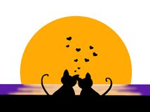 Chats dans l'amour Images stock