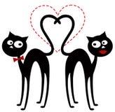 Chats dans l'amour Images libres de droits
