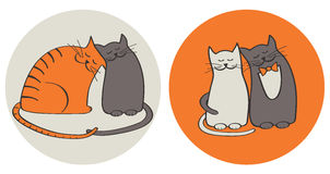 Chats dans l'amour photo stock