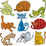 Chats de dessin animé réglés Photo stock