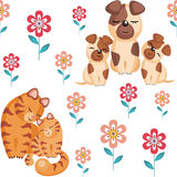 Chats et chiens Image stock