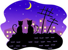 Chats la nuit Photographie stock