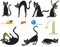 chats noirs Photographie stock libre de droits