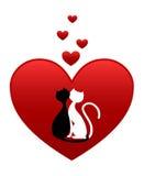 Chats noirs et blancs Photographie stock libre de droits