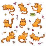 Chats rouges drôles Photo libre de droits