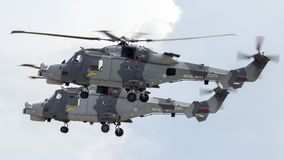 Chats sauvages d'AgustaWestland AW159 Images libres de droits