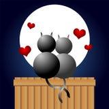 Chats sous le clair de lune Image stock