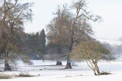 Chatsworth, Derbyshire Fotos de Stock