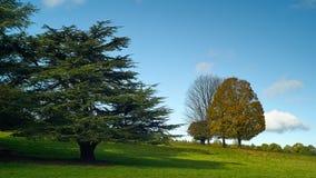 Chatsworth parkerar Arkivbild