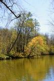 Chattahoochee River arkivfoton