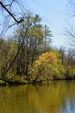 Chattahoochee River fotografering för bildbyråer