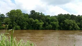 Chattahoochee River stock images