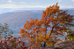 Chattanooga in Autumn stock photography
