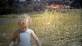 CHATTANOOGA, ETATS-UNIS - 1952 : Bébé d'une chevelure bouclé blond marchant dans un domaine d'or des herbes banque de vidéos
