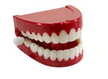 Chatter Teeth Royalty Free Stock Photo