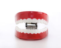 Chattering funny novelty teeth. A close up photo of red plastic chattering funny novelty teeth Royalty Free Stock Photography