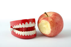 Chattering teeth. Comedy wind-up chattering teeth isolated on white with clipping path Stock Image