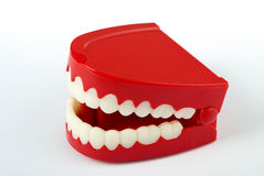 Chattering teeth facing left. Comedy wind-up chattering teeth isolated on white with clipping path. Facing left Royalty Free Stock Photography
