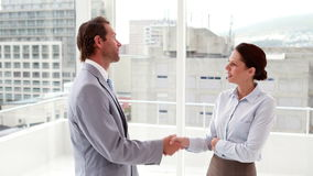 Chatting business team shaking hands stock footage