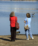 Chatting at the park. Two women chatting at the park, watching ducks on the pond royalty free stock photo