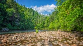 Chattooga lös och scenisk flod, GA/SC royaltyfria foton