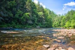 Chattooga lös och scenisk flod, GA/SC royaltyfria bilder