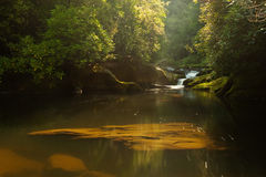 Chattooga River at Dawn Stock Photo