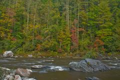 Chattooga river fall scenic. Rushing from recent rains Royalty Free Stock Photography