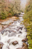 Chattooga River at Iron Bridge Royalty Free Stock Images