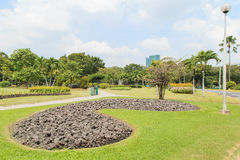 Chatuchak park in bangkok Thailand Royalty Free Stock Image