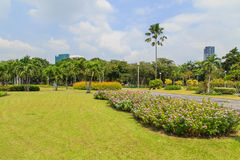 Chatuchak park in bangkok Thailand Stock Photography
