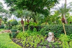 Chatuchak park in bangkok Thailand Royalty Free Stock Image