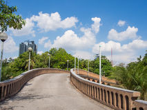 Chatuchak Park With Blue Sky Stock Photos