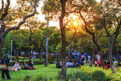 Chatuchak parka natura i drzewa Obraz Royalty Free