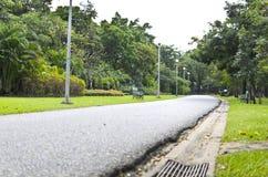 Chatuchak Spaceru Sposób Parkowy Bangkok Tajlandia Zdjęcia Royalty Free