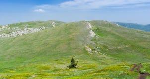 Chatyr-Dah - massif montagneux en Crimée, Ukraine photos stock