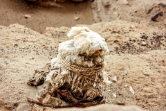 Chauchilla ancient cemetery in Peru,Baby Mummy Stock Images