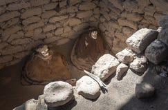 Chauchilla Cemetery with prehispanic mummies in Nazca desert, Pe Stock Image
