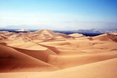 Chauchilla desert. The chauchilla desert landscape in peru Stock Images