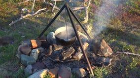 Chaudron de l'eau se dorant sur un feu de camp clips vidéos
