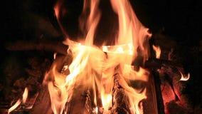 Chaudron sur le feu de camp dans l'obscurité banque de vidéos