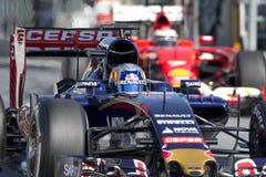 Chaufför Carlos Sainz Team Toro Rosso Arkivbild